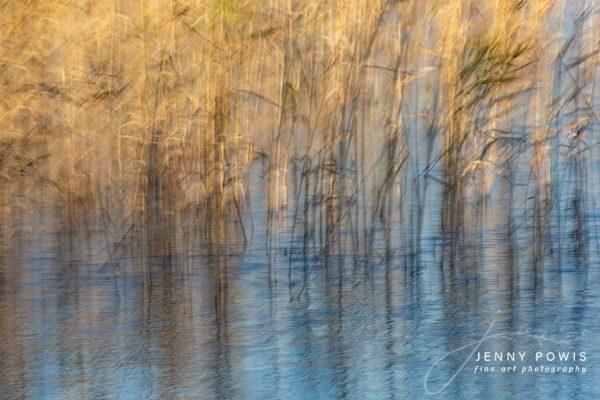 Creative River Reeds